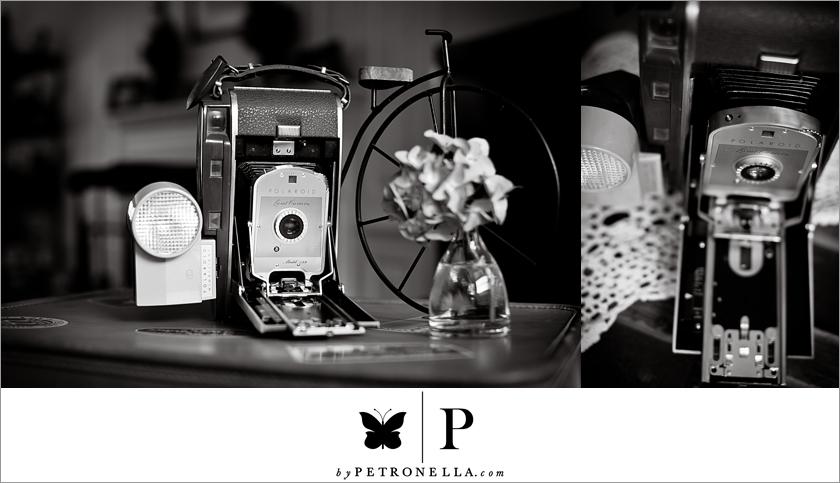 vintage Polaroid land camera