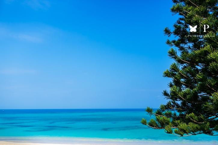 Bermuda Vacation | Disrupt & Recharge