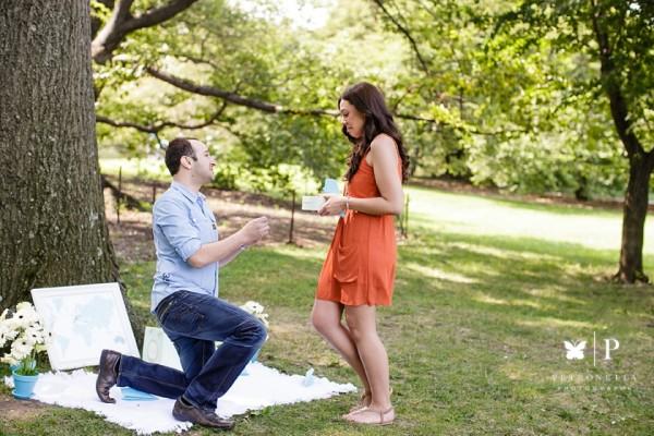 Central Park Photo Tour Proposal