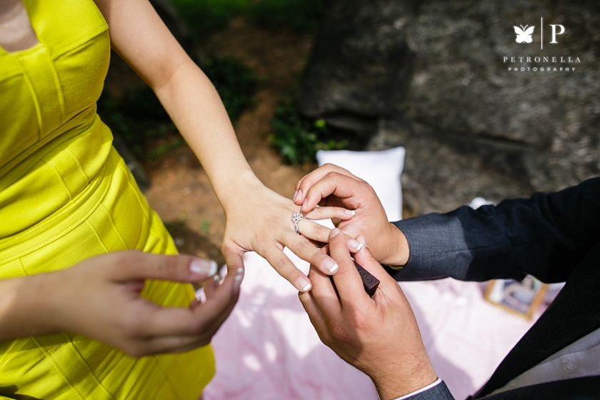 Central Park Lebanese Marriage Proposal Verragio engagement ring Petronella Photography (22)