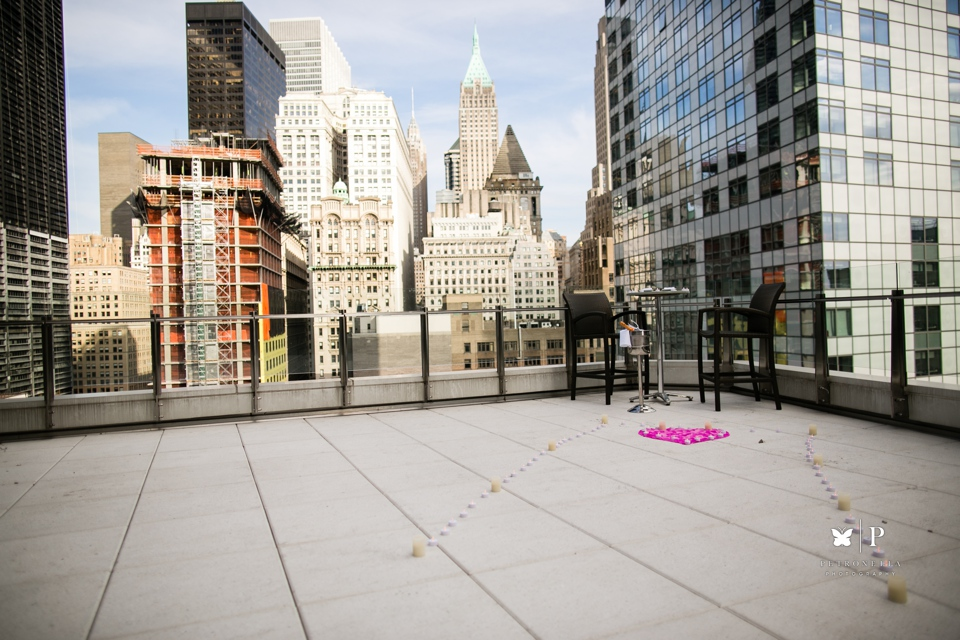 View of the World luxury New York Indian surprise marriage proposal (7)