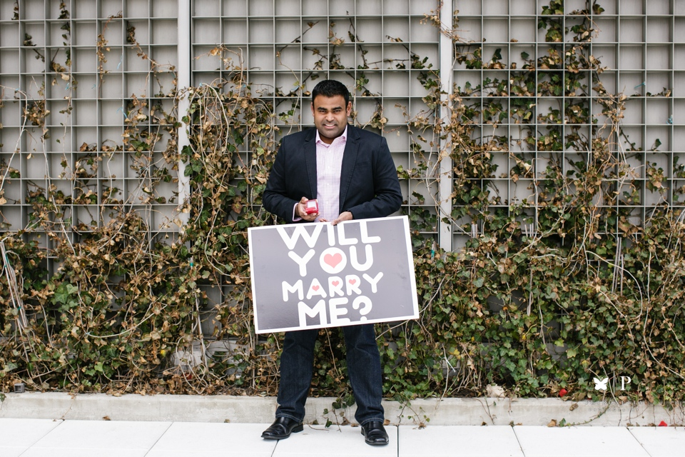 View of the World luxury New York Indian surprise marriage proposal (2)